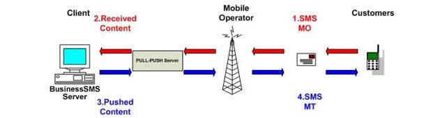 Bulk SMS   SMS Alerts   SMS API   SMPP Bulk SMS   SMS